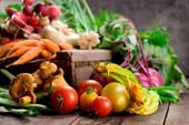 sayur - sayuran